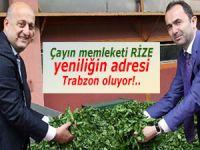 Çayın memleketi Rize, yeniliğin adresi Trabzon!