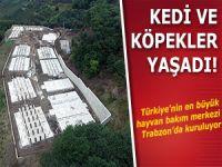 Türkiye'nin en büyük hayvan bakım merkezi olacak