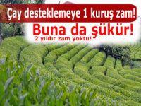 Çay destekleme fiyatı 13 kuruş olarak açıklandı