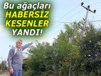 Elektrik şebekelerinin yanındaki ağaçları kesmeyin!