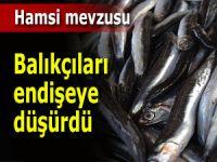 Hamsi avı balıkçılar için içler acısı