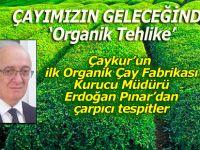 ÇAYIMIZIN GELECEĞİNDE 'Organik Tehlike'