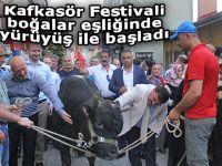 Kafkasör Festivali boğalar eşliğinde yürüyüş ile başladı