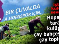 Hopaspor çay üreticilerinin desteği ile yükseliyor