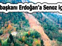 Cumhurbaşkanı Erdoğan'a Senoz için çağrıda bulundu