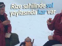 Rize'de sahilde şiddetli yağış, yaylalarda kar
