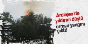 Ardeşen'de yıldırım orman yaktı