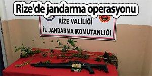 Rize'de jandarma operasyonu
