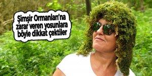 Şimşir Ormanları'na zarar veren yosunlara böyle dikkat çektiler