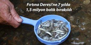 Fırtına Deresi'ne 7 yılda 1,5 milyon balık bırakıldı