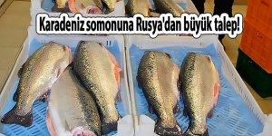 Karadeniz somonu Rusya'dan büyük talep görüyor