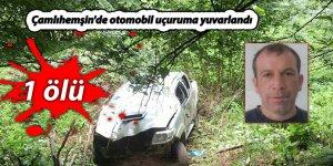Çamlıhemşin'de otomobil uçuruma yuvarlandı: 1 ölü