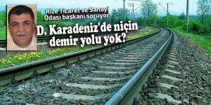 D. Karadeniz'de niçin demir yolu yok?