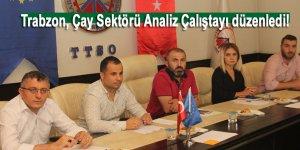 Trabzon, Çay Sektörü Analiz Çalıştayı düzenledi!