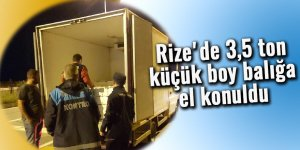 Rize'de 3,5 ton küçük boy balığa el konuldu