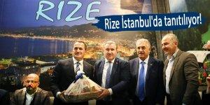 Rize İstanbul'da tanıtılıyor!