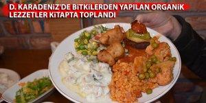D. Karadeniz'de bitkilerden yapılan organik lezzetler kitapta toplandı