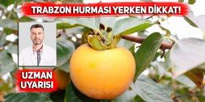 Trabzon Hurması yerken dikkat!