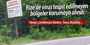 Rize'de virus tespit edilmeyen bölgeler korumaya alındı