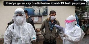 Rize'ye gelen çay üreticilerine Kovid-19 testi yapılıyor