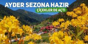 Ayder ve Kaçkar Yaylaları turizm sezonuna hazırlanıyor