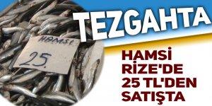 Hamsi Rize'de 25 TL'den tezgahtaki yerini aldı