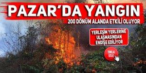 Pazar'da örtü yangını