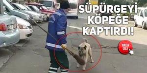 Süpürgeyi köpeğe kaptırdı!