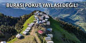 Burası Pokut Yaylası değil!