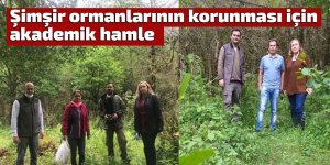 Şimşir ormanlarının korunması için akademik hamle